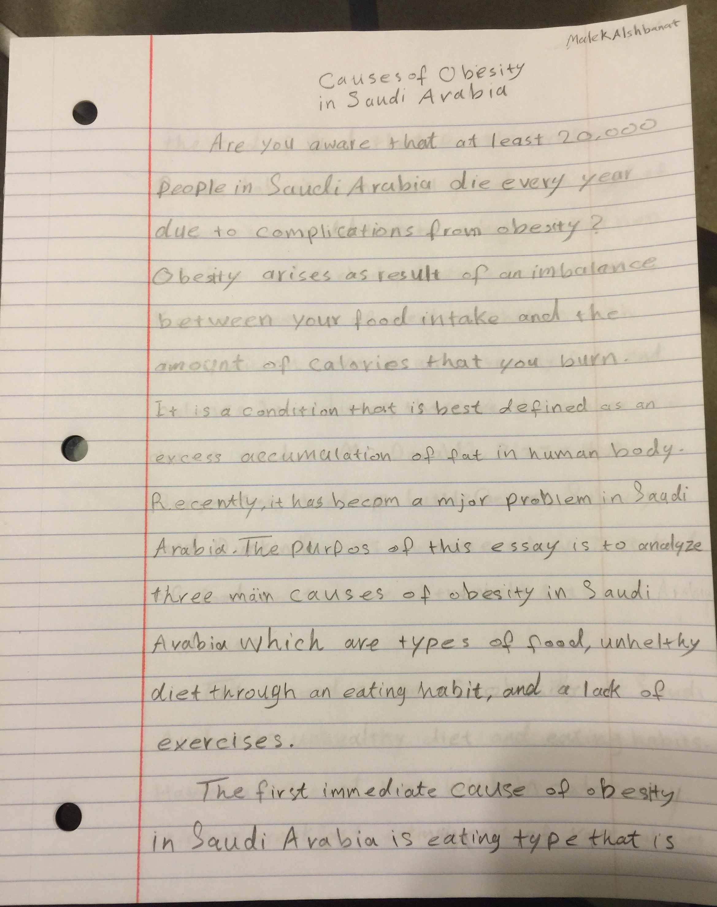 informative essay about obesity