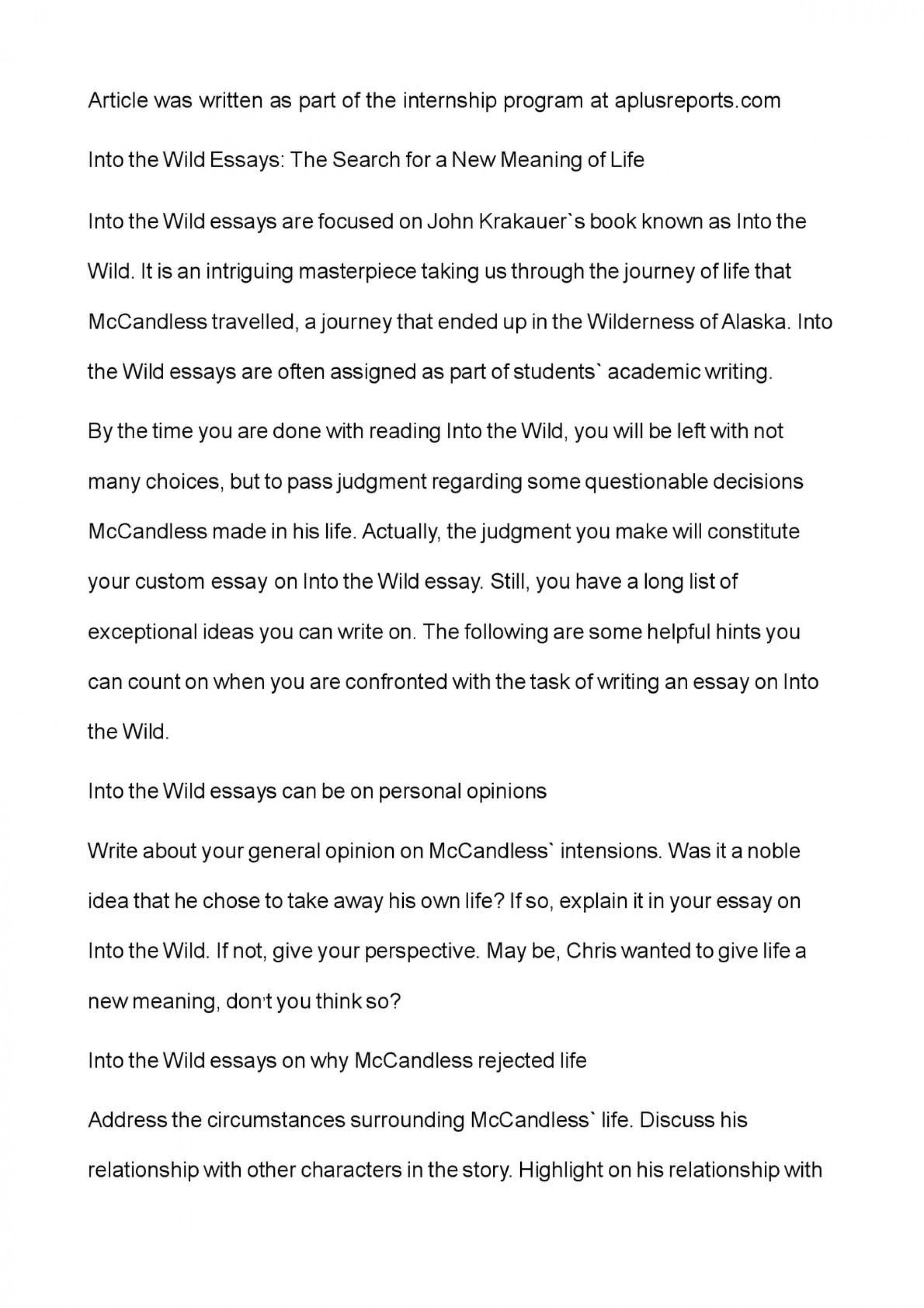003 Into The Wild Essay Example Impressive Writing Prompts Titles Discussion Questions Chapter 2 1920