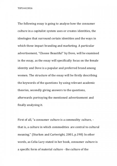 003 Lva1 App6892 Thumbnail Essay About Culture Dreaded On Indian And Society Celebrating Arts Through Reading 480