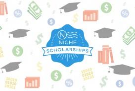 003 Niche No Essay Scholarship Example Marvelous Reddit Winners