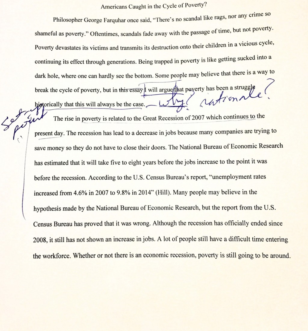 003 What Is Paraphrase In An Essay Magnificent A Large
