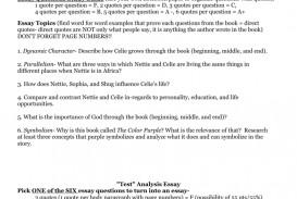 004 008011197 1 The Color Purple Essay Impressive Research Paper Outline Introduction
