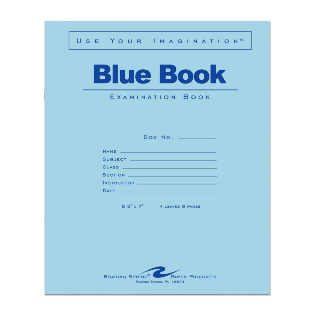 004 1024x1024 Blue Book Essay Magnificent Example Little Writing Large