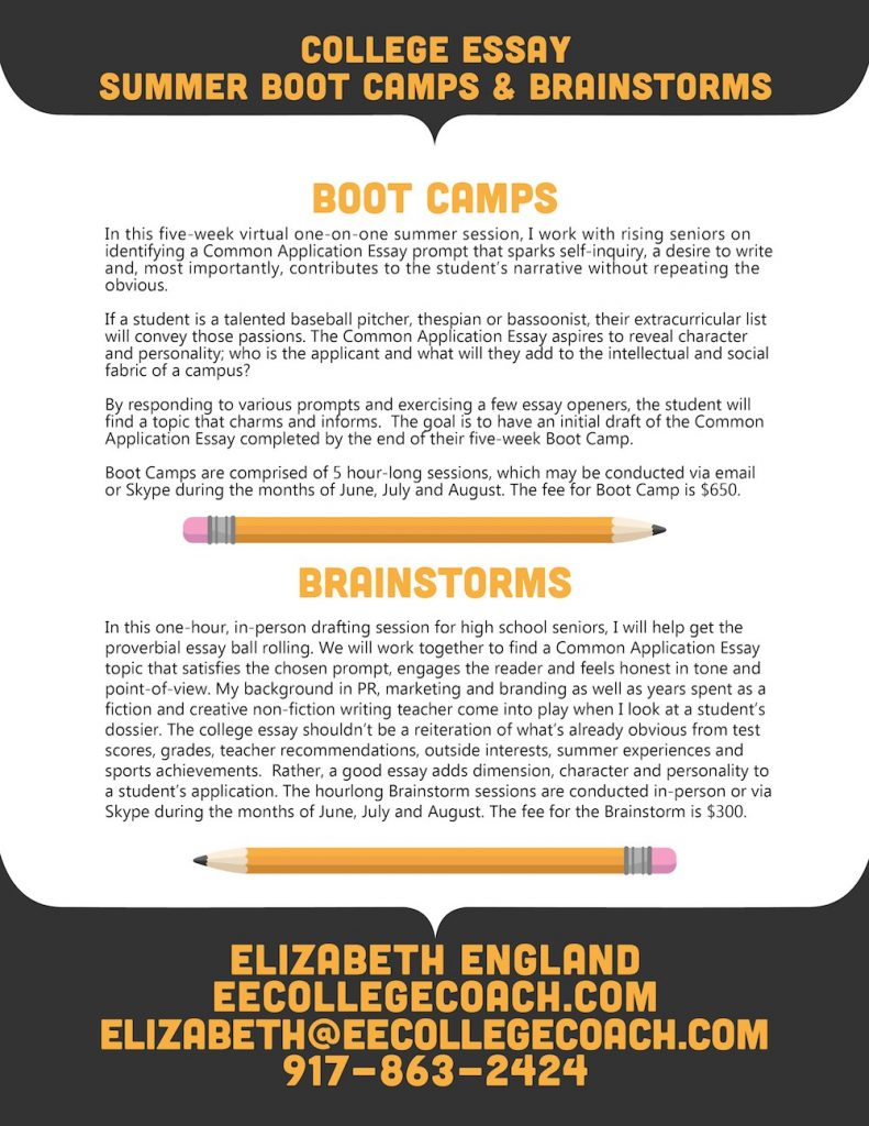 004 College Essay Summer Boot Camps Brainstorms 791x1024 Example Astounding Princeton Review Essays Examples Full