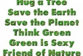 004 Essay Example How Can We Save Marvelous Trees To In Hindi Telugu