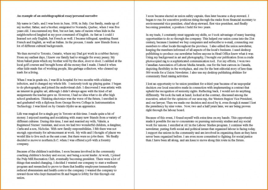 004 Essay Example How To Write An Autobiography Incredible Autobiographical For A Job College Examples Admissions