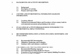 004 Essay Example Narrative Outline Worksheet College Marvelous Level Template