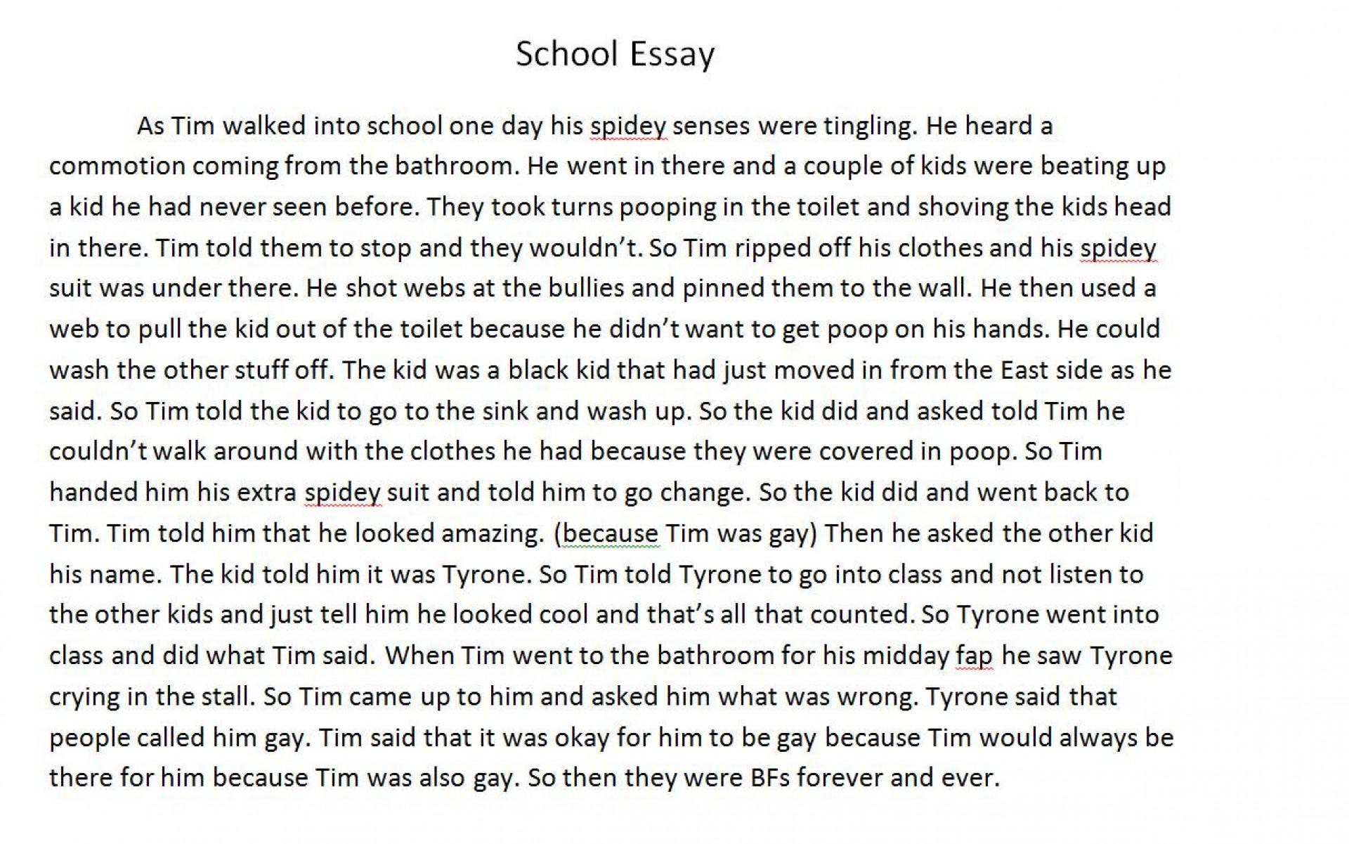 004 Essay Example On School Fddb74 3451752 Excellent Florida Shooting Uniform Is Necessary 1920