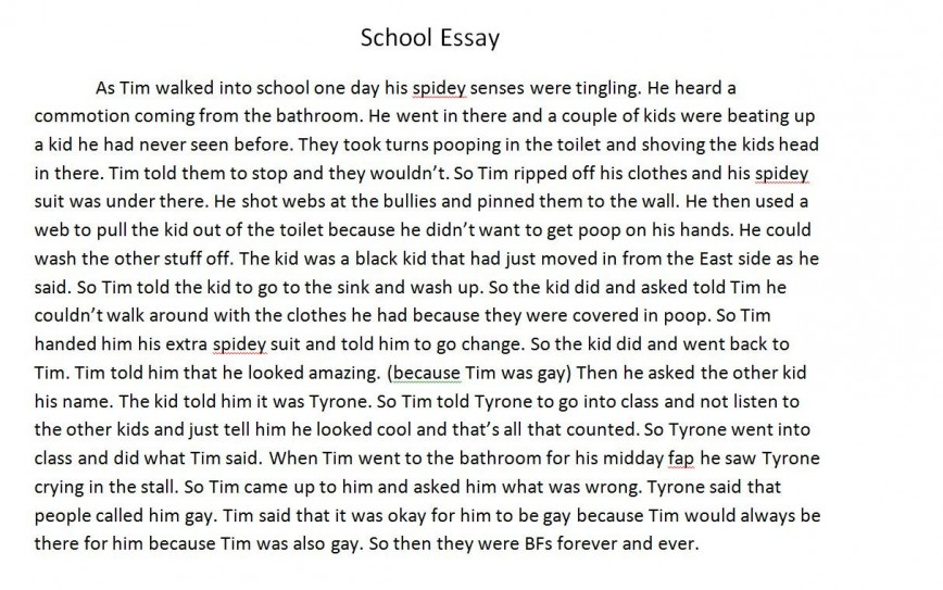 004 Essay Example On School Fddb74 3451752 Excellent Persuasive Unhealthy Lunches Shootings Cause And Effect Violence
