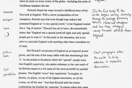 004 Essay Example Rhetorical Examples Of Analysis Essays Goal Blockety Co Using Ethos Pathos And Logo Logos Impressive Ap Lang 2016 Devices English