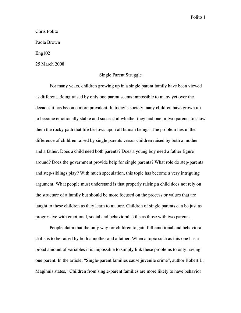 004 Essay Example Single Parent Struggle Argumentative The Real Effects Of 791px Expository Sam Parenting In Fascinating India Full