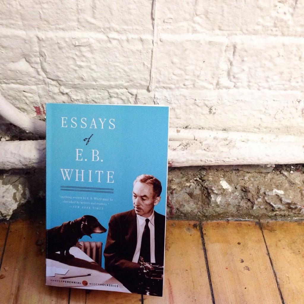 004 Img 4919resize9002c900 White Essays Essay Unusual Eb Education Summary Online Pdf Large
