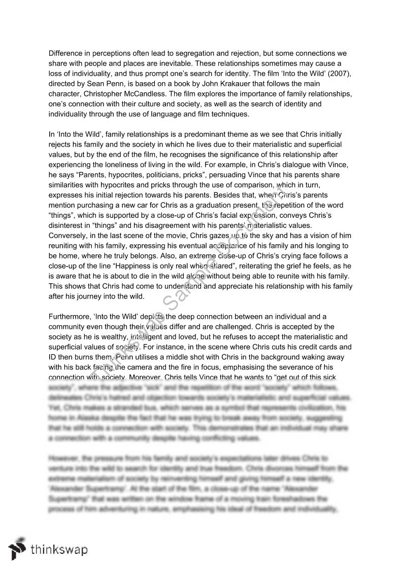 004 Into The Wild Essay Example 76639 Belongingrelatedtextessay Fadded41 Impressive Writing Prompts Titles Discussion Questions Chapter 2 Full