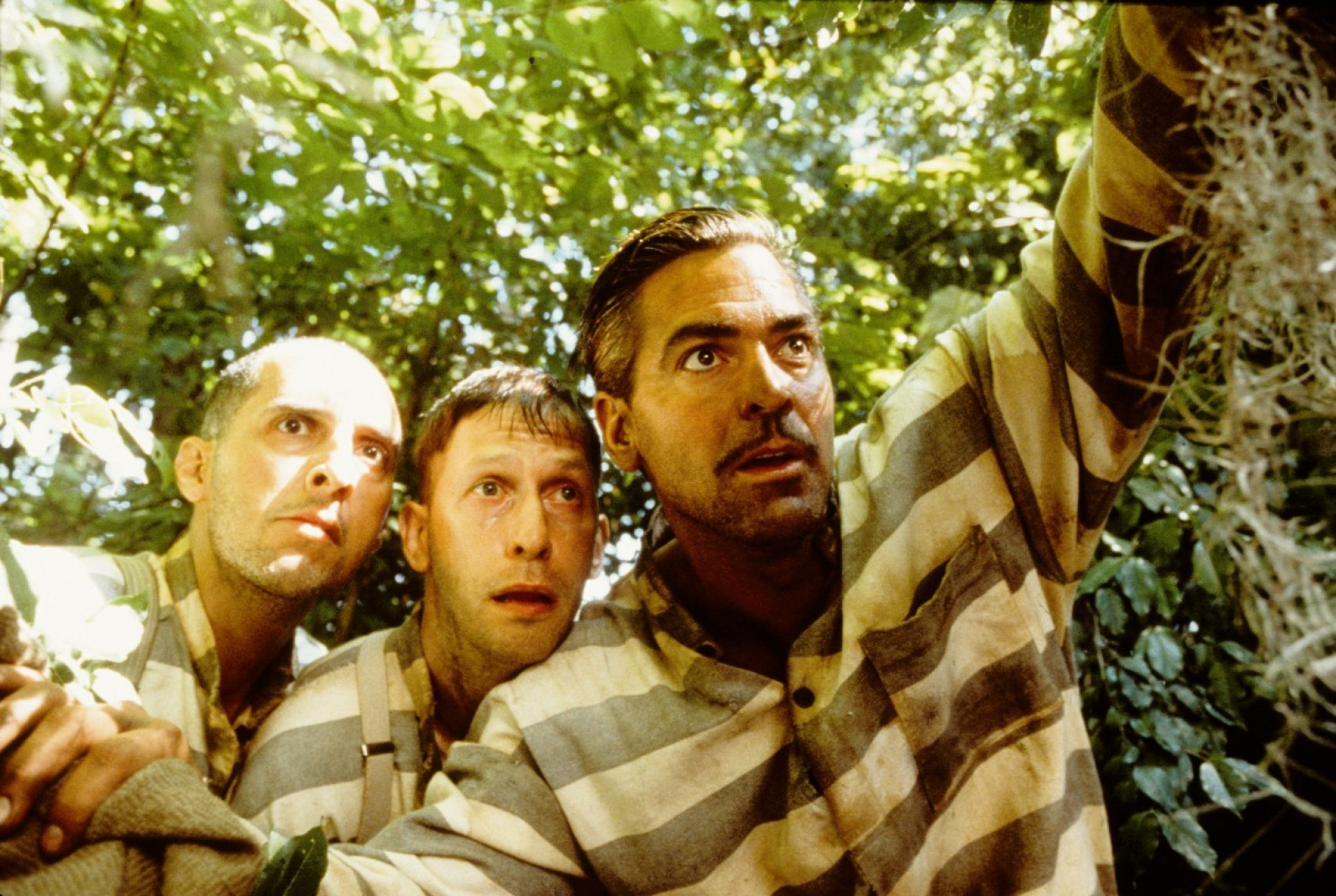 004 O Brother Where Art Thou Essay Striking And The Odyssey Comparison Vs Compared To 1920