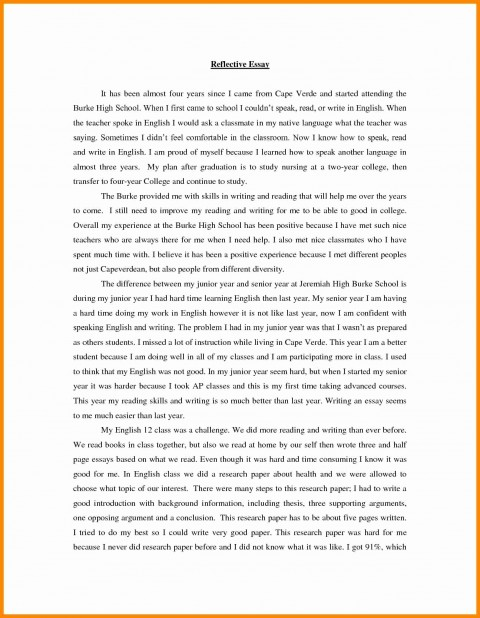 Japanese death note essay