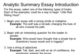 004 Types Of Hooks For Essays Essay Example Examples Co Sli Expository Comparison Writing Narrative Argumentative High Surprising Different Pdf