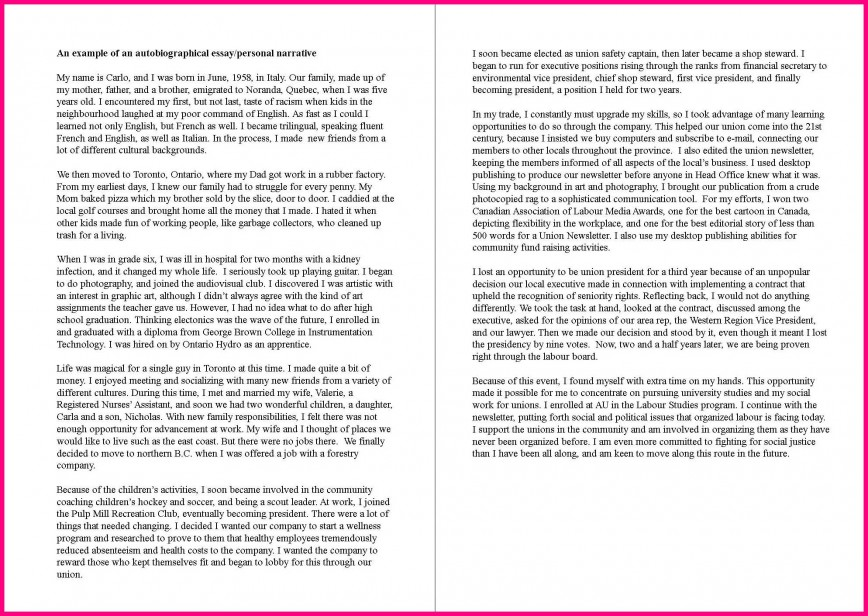 005 Autobiography Essay Example Family Background Sample Autobiographical Unique Bibliography Examples Pdf About Yourself