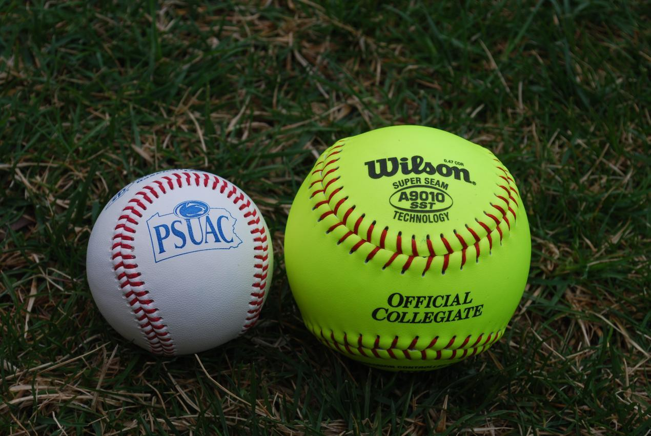 005 Baseball Vs Softballfit12702c850ssl1 Why I Love Softball Essay Unforgettable Full