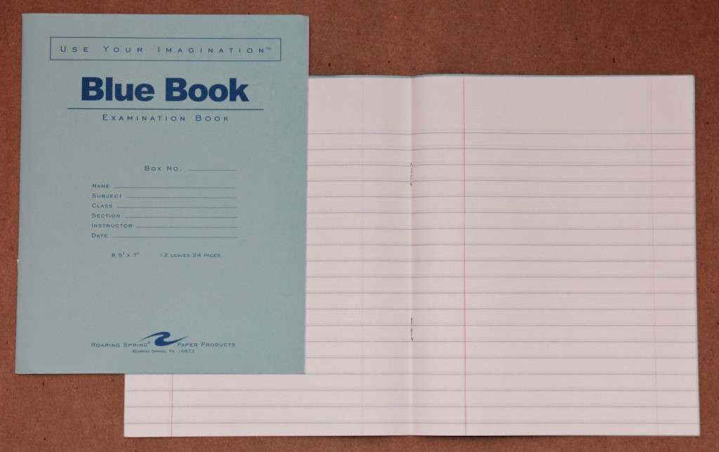 005 Blue Book Sheet Essay Magnificent Example Little Writing Large
