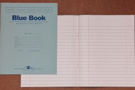 005 Blue Book Sheet Essay Magnificent Example Little Writing
