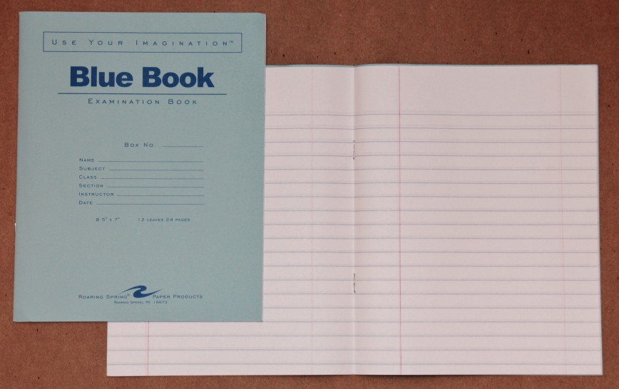 005 Blue Book Sheet Essay Magnificent Little Writing Cost Example
