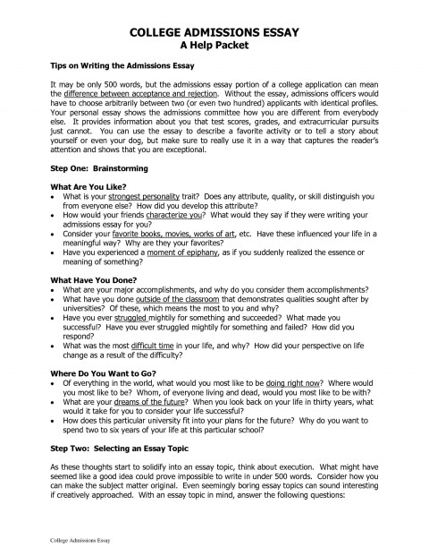 005 College Admissions Essay Exceptional Essays That Worked 12 Admission Format Heading Sample 480