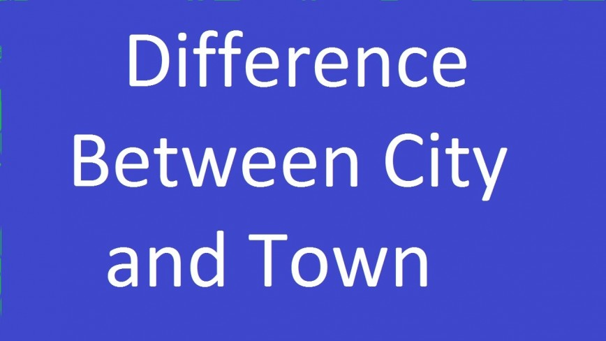 005 Difference Between City Life And Village Essay Example
