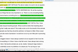 005 Essay Example Cause And Effect Expository Excellent