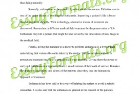 005 Essay Example Euthanasia Argumentative Counter Argument Persuasive Examples L Stirring Outline Conclusion Pdf
