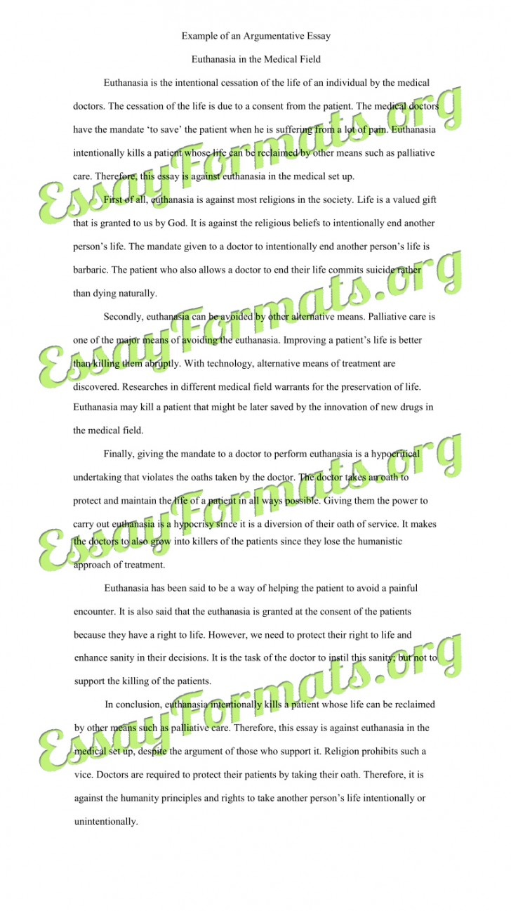 005 Essay Example Euthanasia Argumentative Counter Argument Persuasive Examples L Stirring Outline Conclusion Pdf 728