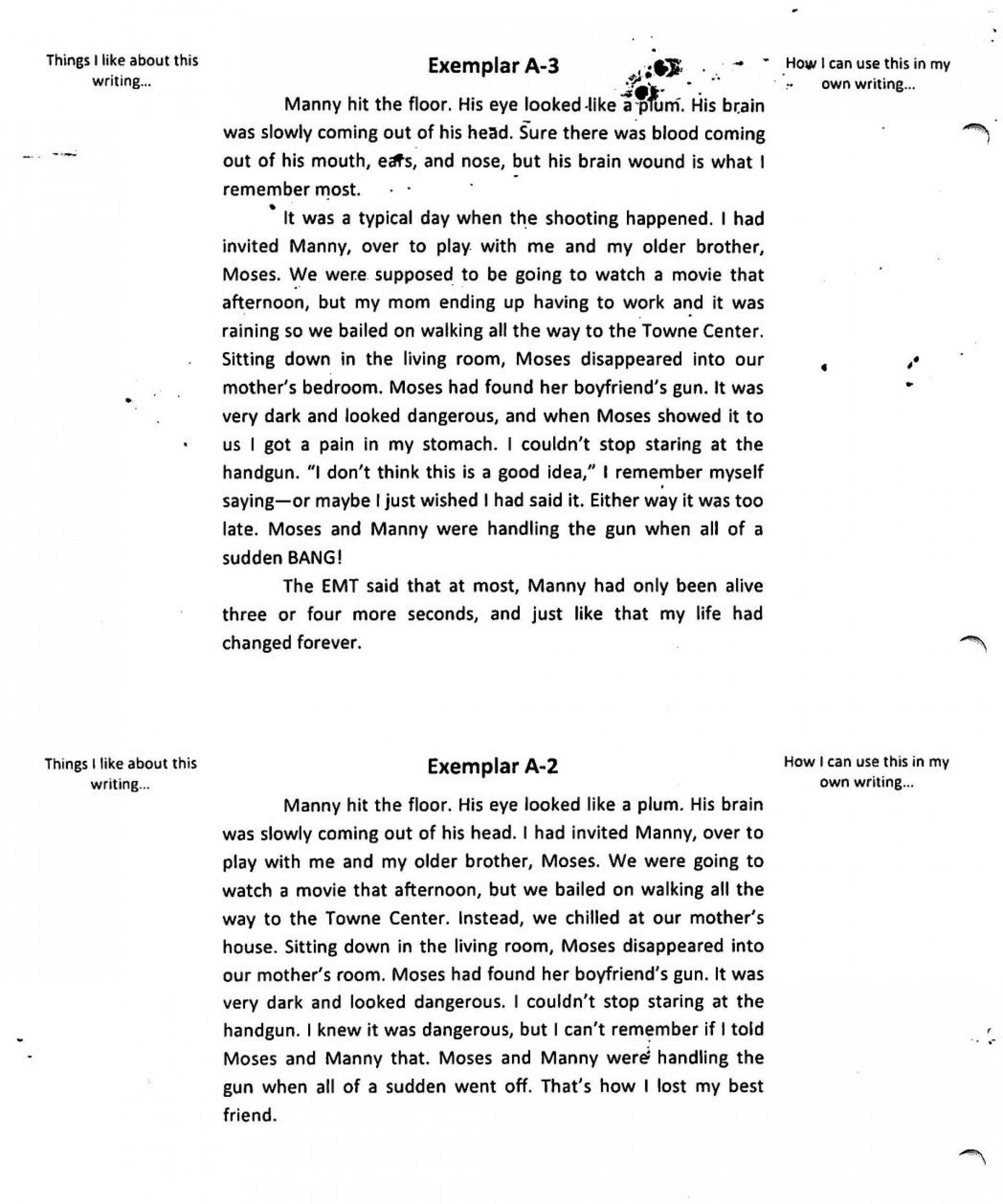 005 Essay Example Good Narrative Of An My How To Write Personal For Co College Unique Examples Hooks Best Essays 1920