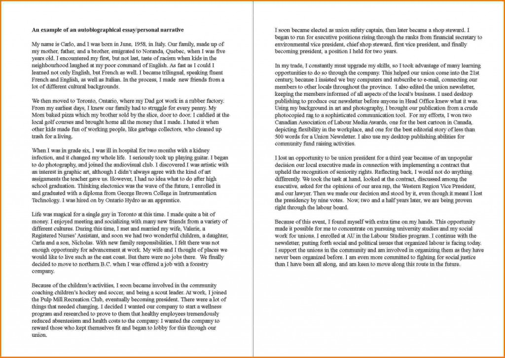 005 Essay Example How To Write An Autobiography Sensational College Of About Yourself Tagalog For Students Highschool Large