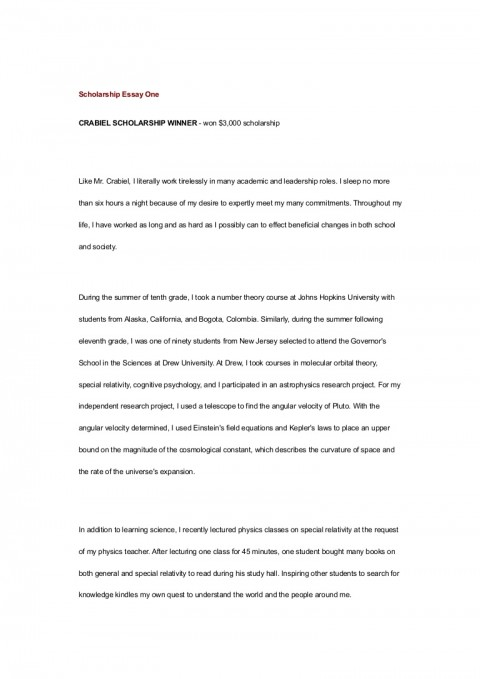 005 Essay Example On Achieving Goal Scholarshipessayone Phpapp01 Thumbnail Stunning A Narrative 480