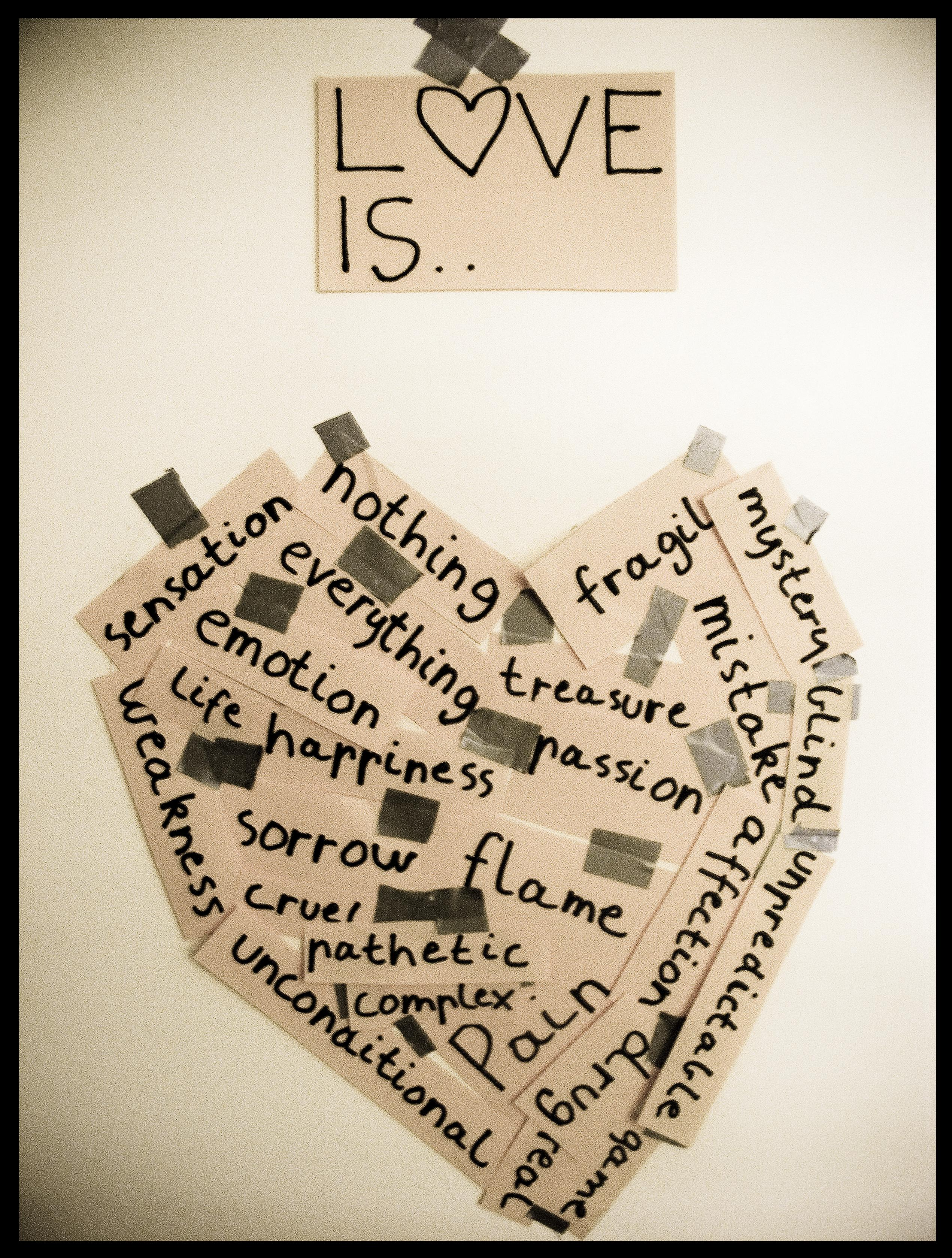 005 Essay Example What Is Love  By Paranoia 7 Modern Phenomenal Essays Contest Winner Amy RosenthalFull
