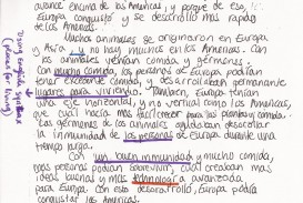 005 Essay Meaning In Spanish Elizabeths20spanish20writing20sample Marvelous English Means Friend Translate