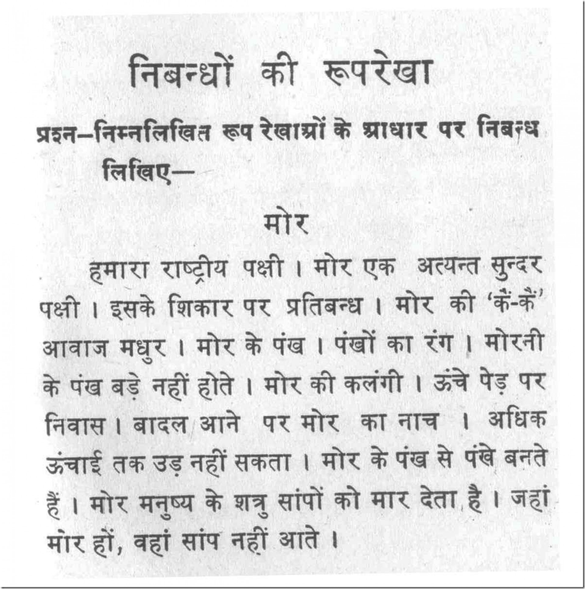 005 Essay On Tiger 10034 Thumb Astounding Shroff Hindi For Class 1 National Animal In 1920