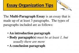 005 Essay Organization Tips L Multi Paragraph Best Example Iep Goal