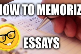 005 How To Memorise An Essay In Hour Example Unbelievable A Few Hours Remember 1