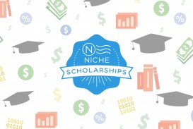 005 Niches2 Essay Example No Striking Niche $2000 Scholarship 2000 Legit