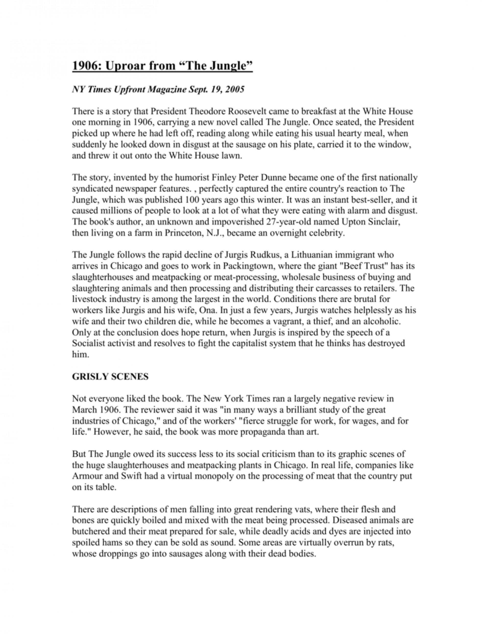 005 The Jungle Upton Sinclair Book Review Essay 007627924 2 Rare 1920