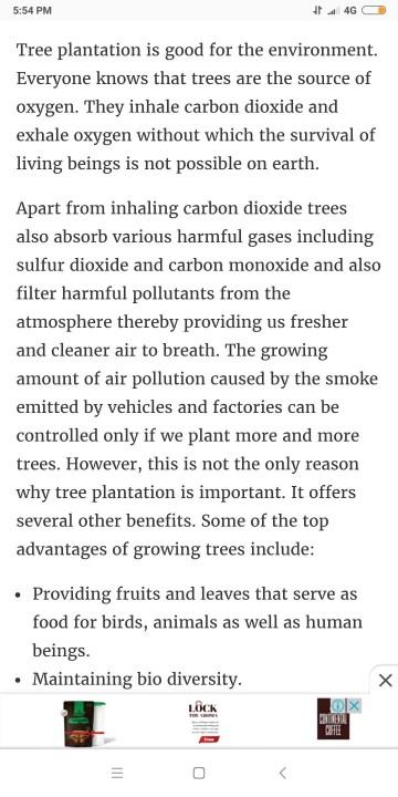 018 Tree Essay Example ~ Thatsnotus