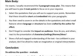 005 Writing Lit Essayw816h9999 Literature Essay Introduction Unbelievable Sample Literary Format
