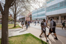 006 6230 Spring Candid 20180410 University Of Arizona Honors College Essay Prompt Stunning