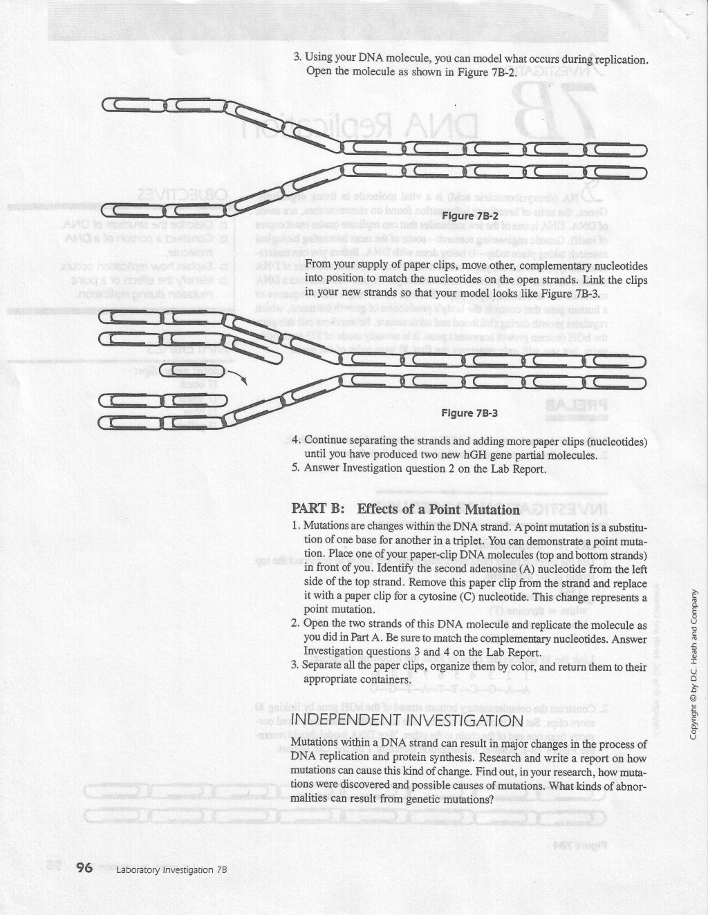 006 Brown Vs Board Of Education Essay Replicationlab2 Jpg Magnificent Conclusion Term Paper Thematic Large