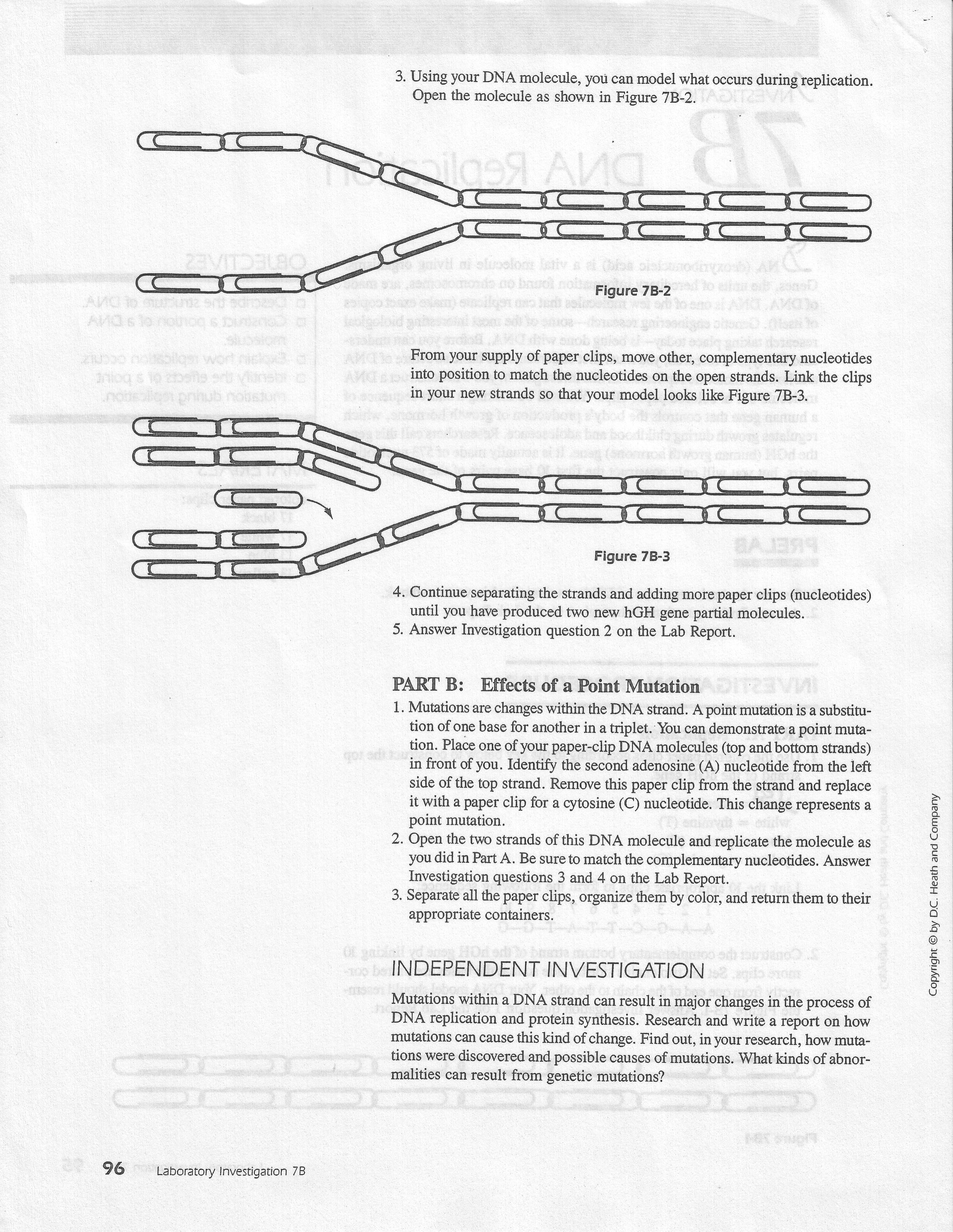 006 Brown Vs Board Of Education Essay Replicationlab2 Jpg Magnificent Conclusion Term Paper Thematic Full