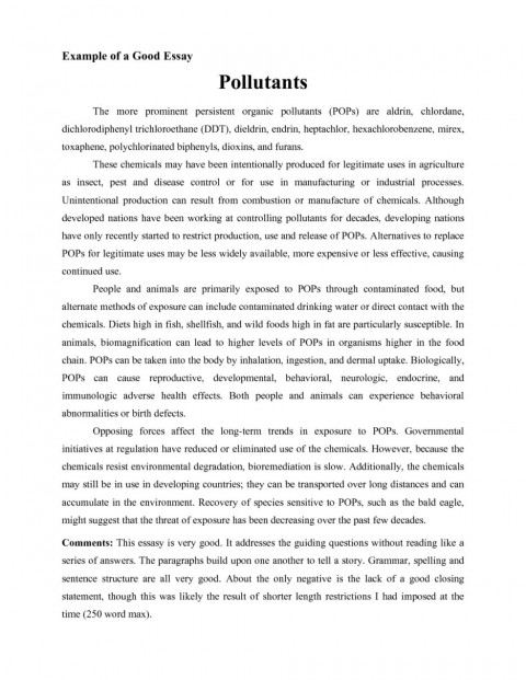 006 Creative Essay Example The Of How To Write Good For College Admission Examples Higher English Pdf Writing Side Introduction Nonfiction Fearsome Personal 480