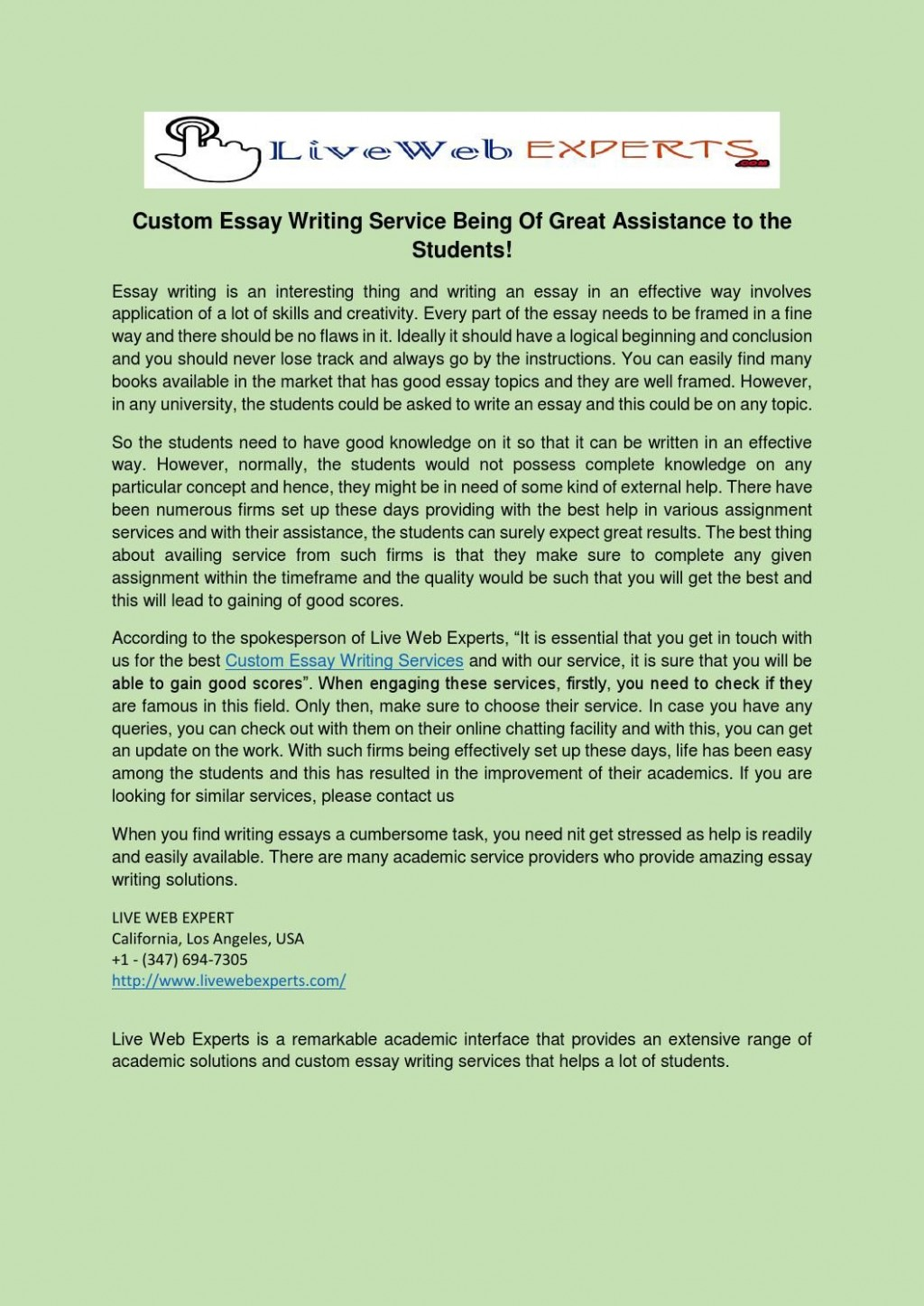 006 Custom Essay Papers Example Impressive Large