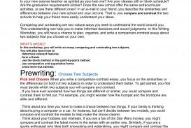 006 Essay Example Comparison Beautiful Contrast Compare Format College Graphic Organizer Pdf Examples