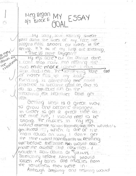 006 Essay Example Goal20essay Jpg Awesome Goals Mba Consulting Academic For College Sample 480