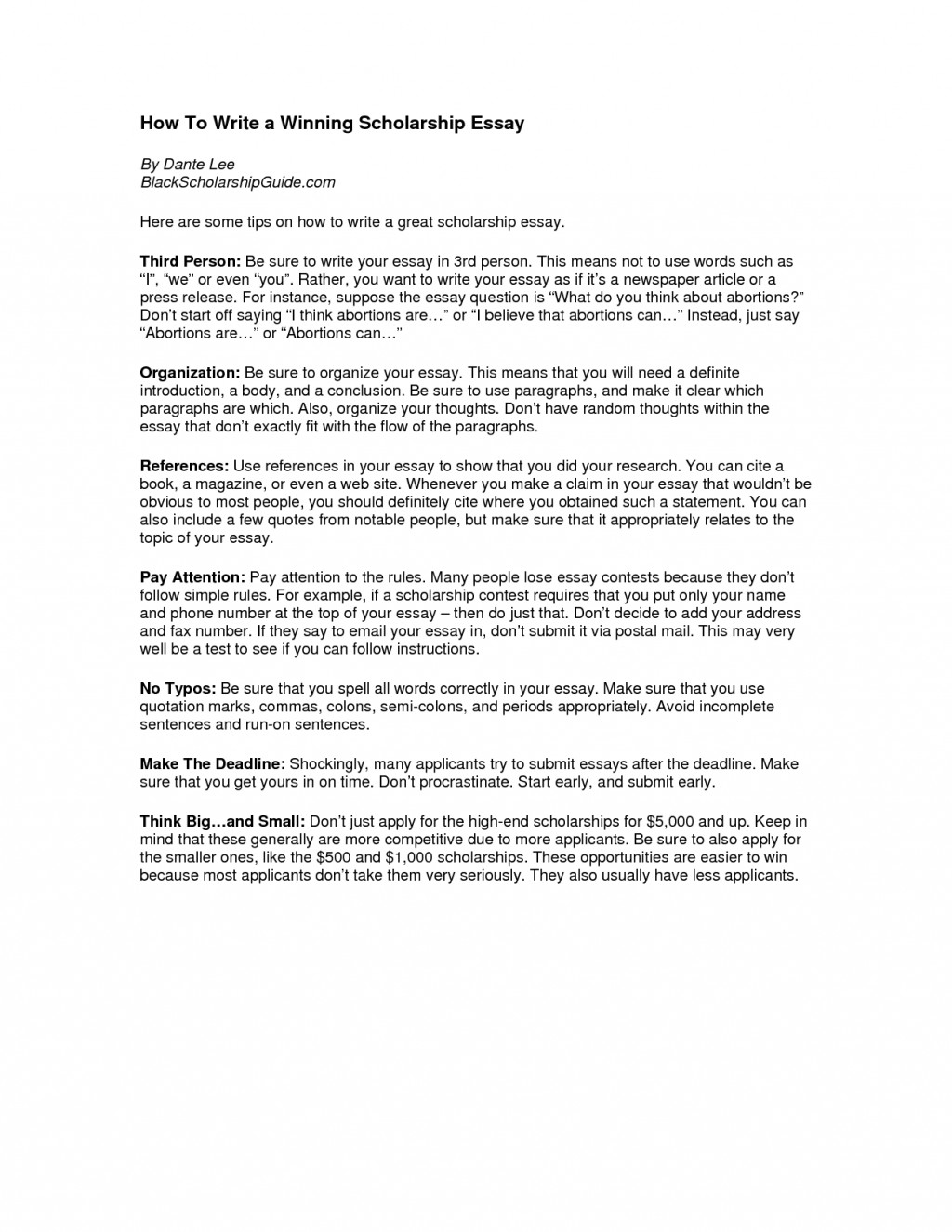 006 Essay Example How To Start Off Scholarship Sensational A Introduction Your Close Large